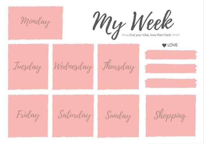 My Week 1